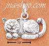 Sterling Silver WHIMSICAL CAT CHARM