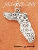 Sterling Silver FLORIDA STATE CHARM