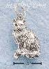 Sterling Silver SMALL ANTIQUED LONG HAIRED CAT W/ CURLED TAIL CH